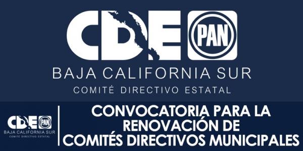 CONVOCATORIA PARA RENOVACION DE CDM
