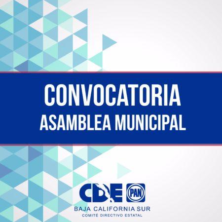 Convocatoria para asambleas municipales de los municipios de La Paz y Los Cabos.
