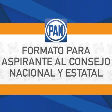 Formatos para aspirantes al Consejo Nacional y Estatal