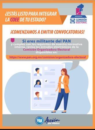 Convocatoria para integrar la Comisión Organizadora Electoral Estatal de Baja California Sur.