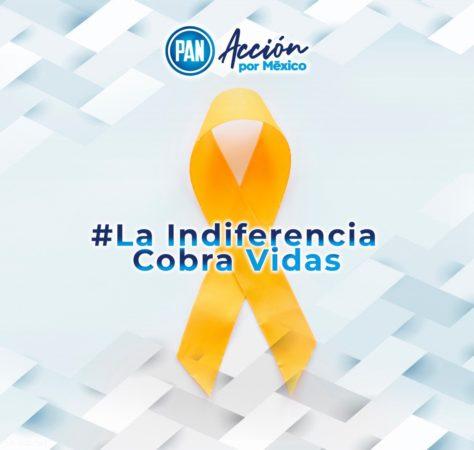 Acción Nacional demanda abasto de medicamentos oncológicos para todo el país